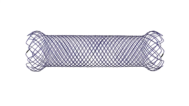 Endoflex Stens autoexpandibles 1